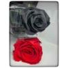 Kép 3/6 - Örök rózsa szál díszdobozban 55cm