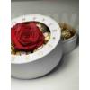Kép 1/2 - Forever Rose Box