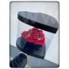 Kép 1/5 - Glass Heart Box